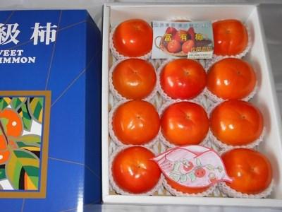 太陽の光をたっぷり浴びた松岡農園の富有柿(12個、3Lサイズ)