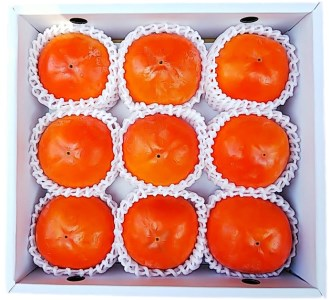 国城観光農園 富有柿(9個/2Lサイズ)