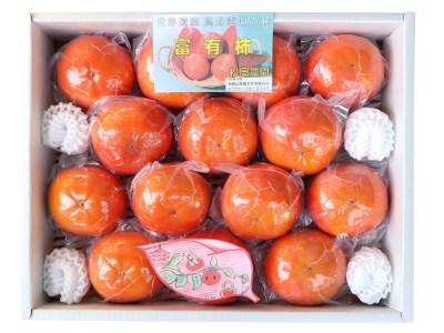 松岡農園最高級 冷蔵富有柿 特選2Lサイズ14個入り