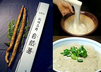 A-060 紀州山里の珍味自然薯【期間限定】