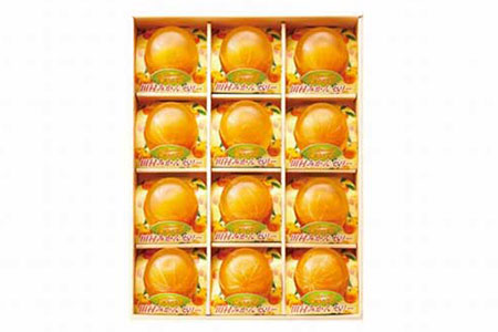 【プレミア和歌山認定】高級『田村みかん』を丸ごと使用!フルーツ丸ごとゼリーセット 12個入