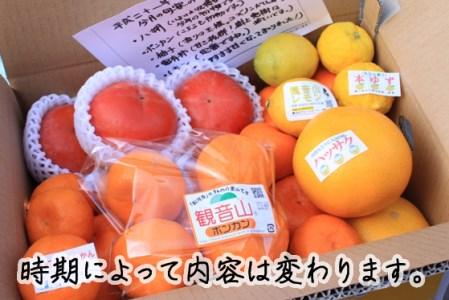 【2612-1055】フルーツ定期便「旬宴」-梅