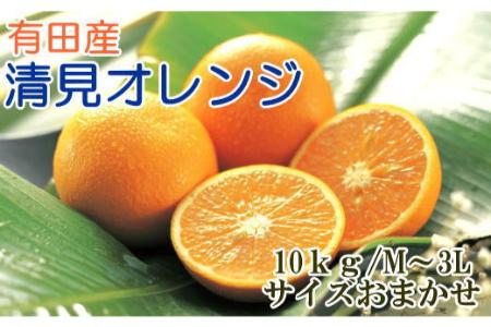 【2612-1289】【濃厚】有田産清見オレンジ10kg(M~3Lサイズおまかせ)