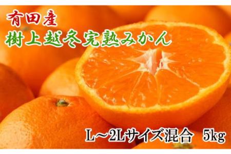 【2612-1316】【濃厚・まろやか】有田産樹上越冬完熟みかん5kg(L~2Lサイズ混合・赤秀)