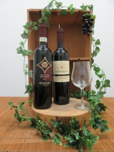 【2612-0017】サルバライ <イタリアワイン 赤> ペアセット