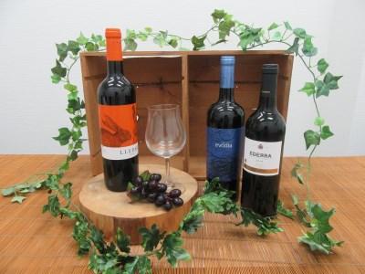【2612-0018】スペインワイン 〈赤〉飲み比べセット