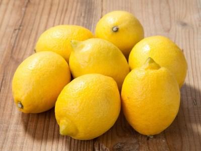 【2612-0042】観音山レモン 3kg