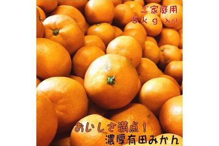 【和歌山県特産】おいしさ満点!濃厚有田みかん 5kg【ご家庭用/サイズ混合】【有田マルシェ】