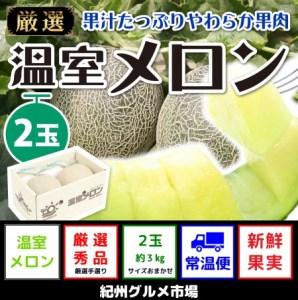 【秀選】温室アールスメロン 大玉(2玉) 紀州グルメ市場