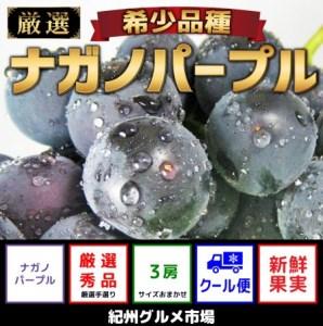 【数量限定】 希少品種 ナガノパープル (3房) 紀州グルメ市場