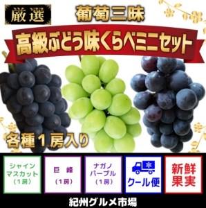 【数量限定】葡萄三昧 高級ぶどう 味くらべミニセット 紀州グルメ市場