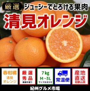 【春かんきつ】人気の清見オレンジ(秀品) 約10kg 和歌山から産地直送 【紀州グルメ市場】◆◆