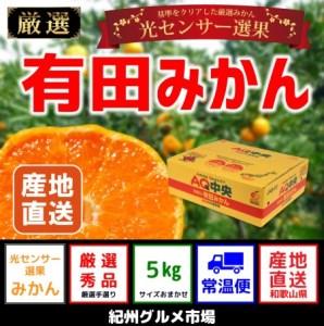 【ギフト選別】有田みかん 光センサー選果 5kg(S~Lサイズ)