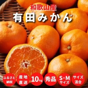 有田みかん 10kg S・Mサイズ