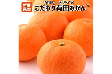 【こだわり】有田みかん 5kg(Mサイズ指定)