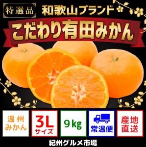 【こだわり】有田みかん たっぷり約9kg(大玉3Lサイズ指定)