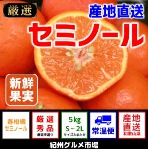 【産地直送】セミノール 約5kg(S~3L)【紀州グルメ市場】◆◆