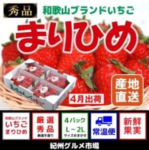 【4月出荷分】 完熟いちご まりひめ(秀品) たっぷり4パック