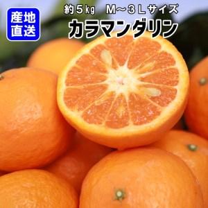 【産地直送】カラマンダリン 約5kg(S~2L)紀州グルメ市場