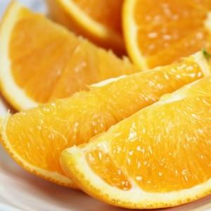 希少な国産バレンシアオレンジ 5kg