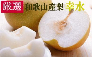 [厳選・産直]和歌山産の梨(幸水)約4kg