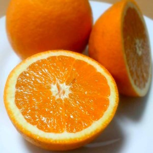 蜂久農園の国産バレンシアオレンジ 5kg