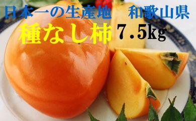 和歌山産 種なし柿 約7.5kg(M・Lサイズおまかせ)