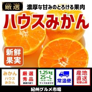 【高級】ハウスみかん 約1.25Kg【紀州グルメ市場】