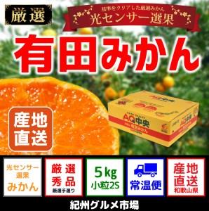 【ギフト選別】有田みかん 光センサー選果 5kg(小粒2Sサイズ)