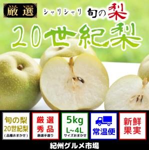 シャリシャリ食感 旬の梨 二十世紀梨 5Kg(L~4L) 紀州グルメ市場
