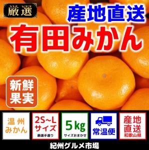 【産地直送】有田みかん 約5kg(2S~Lサイズ)【紀州グルメ市場】