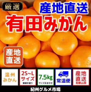 【産地直送】有田みかん 約7.5kg(2S~Lサイズ)紀州グルメ市場