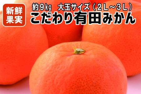 【産地直送】有田みかん 約9kg(大玉:2L~3Lサイズ)紀州グルメ市場