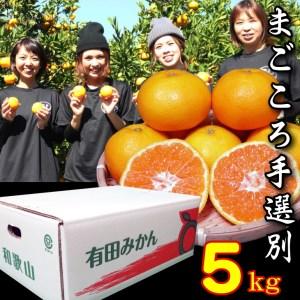 有田みかん 5kg L・2Lサイズ【あしのや】◆◆