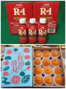 【健康セット】明治 R-1 112ml 24本 と 有田の清見 化粧箱 12個入り M~2Lサイズ(サイズおまかせ)【あしのや】