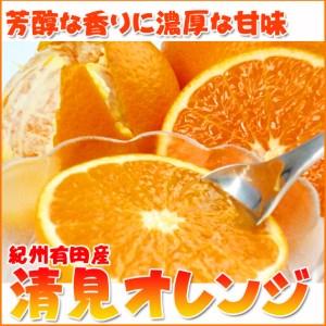とにかくジューシー清見オレンジ 5kg【魚鶴商店】