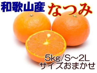 [希少春みかん]和歌山産「なつみ」約5kg・秀品【和歌山厳選館】