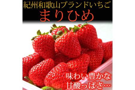 紀州和歌山ブランドいちご「まりひめ」約270g×2P【魚鶴商店】