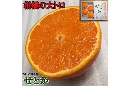 【2625-0049】ちょっと傷ありハーフ化粧箱『柑橘の大トロ』 ハウスせとか4玉入【南泰園】