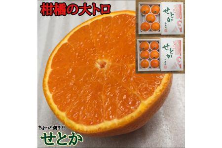 【2625-0050】ちょっと傷ありハーフ化粧箱『柑橘の大トロ』 ハウスせとか5~6玉入【南泰園】