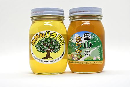 【2625-0080】【限定20セット】ありだみかん蜂蜜 ありだ里山の蜂蜜