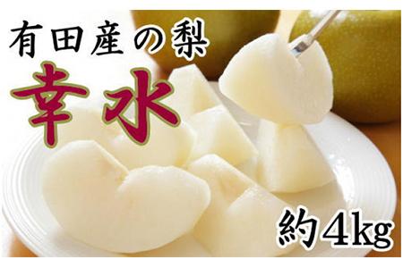 【2625-0207】【先行受付】[産直]有田産の梨(幸水)約4kg