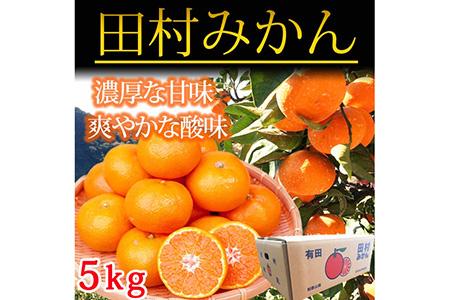 高級ブランド田村みかん 5kg 【魚鶴商店】