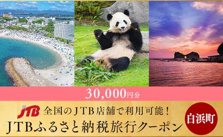 【南紀等】JTBふるさと納税旅行クーポン(30,000円分)