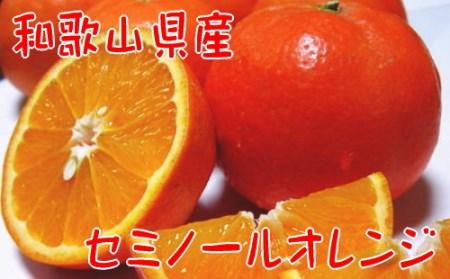 【春の美味】【農家直送】爽快カンキツ/セミノールオレンジ(ご家庭用)4kg【北海道・沖縄配送不可】