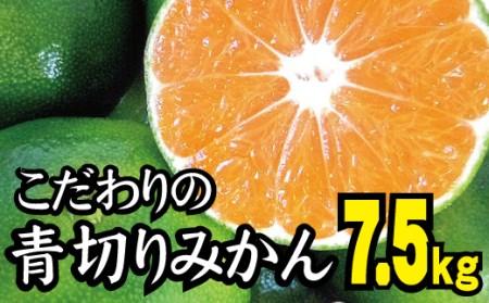 爽やかな味わい青切りみかん約6.5kg 初秋の味覚《有機質肥料100%》ご家庭用