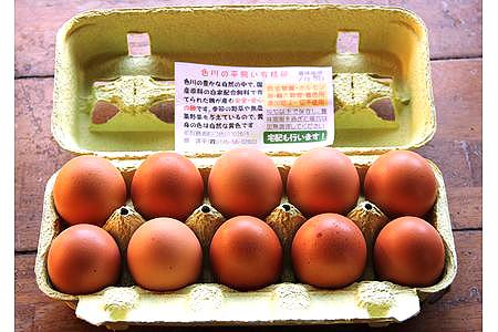 【2613-0064】【限定2セット】【定期便6か月連続お届け】国産飼料にこだわった鶏が産む安全安心のレモン色たまご