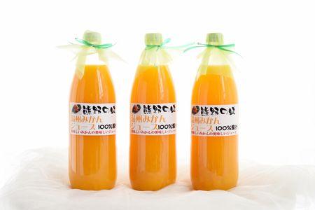 【2613-0001】紀州の甘みがギュッと詰まった果汁100%のみかんジュース3本入り