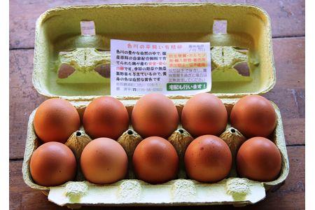 【2613-0042】国産飼料にこだわった鶏が産む安全安心のレモン色たまご