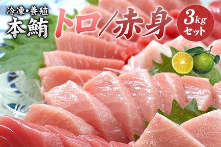 本マグロ(養殖)トロ&赤身セット 3kg(串本町×北山村)【nks112】